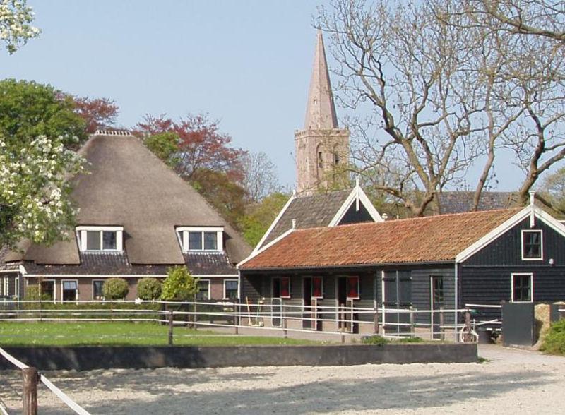Paard aan huis zuid holland for Paard aan huis te koop