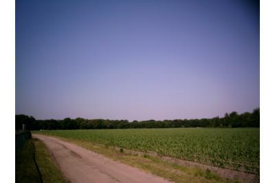 5) Uitzicht zijde Tilderstraat.JPG