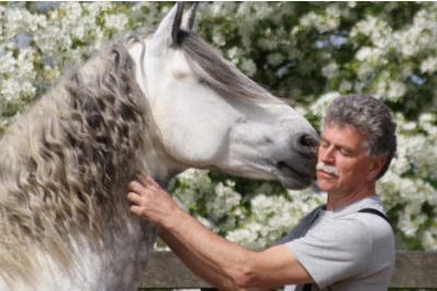De Paardenmaat