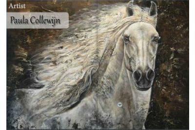 Paula Collewijn The Art of Horses