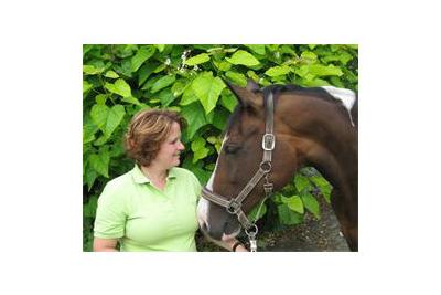 Lisette Dirven Paardensport massage